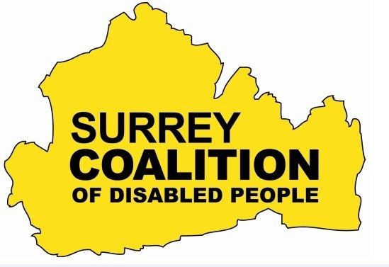 Image result for surrey coalition of disabled people